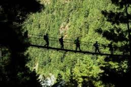 Luxury Bridges or a Rope Bridge - build what is needed not what you are told